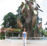 Lilian Linogao