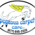 Pegasus Carpet Care Icon