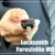 Locksmith Forestville MD Icon