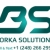 Borka Solutions Icon