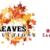 Autumn Leaves Video Productions Icon
